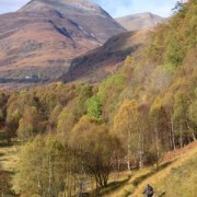 Once at the site of the former German prisoner of war camp, the trail begins to really flow and from here to the end of the Ciaran Path in Kinlochleven the mountain biking is excellent.