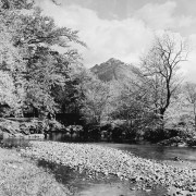 The river coe