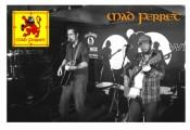 Mad Ferret - musicians
